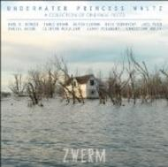 Underwater Princess Waltz: A Collection of One-Page Pieces | New World Records NWR80748