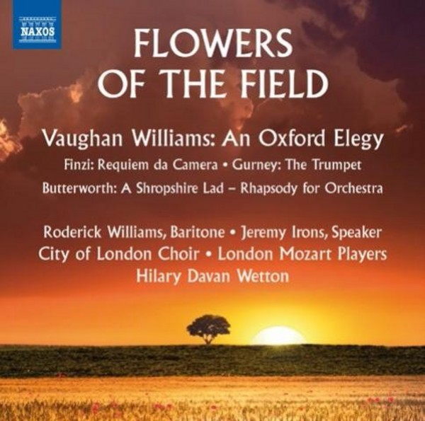 Flowers of the Field | Naxos 8573426
