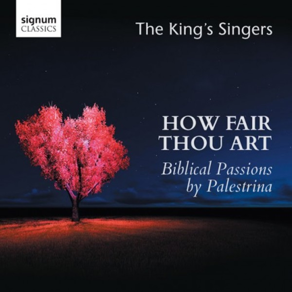 How Fair Thou Art: Biblical Passions by Palestrina | Signum SIGCD450