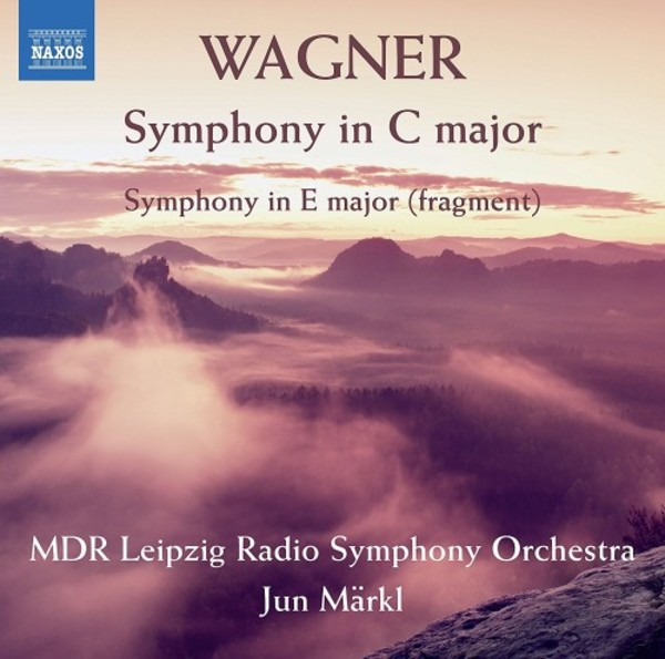 Wagner - Symphony in C major, Symphony in E major (fragment) | Naxos 8573413