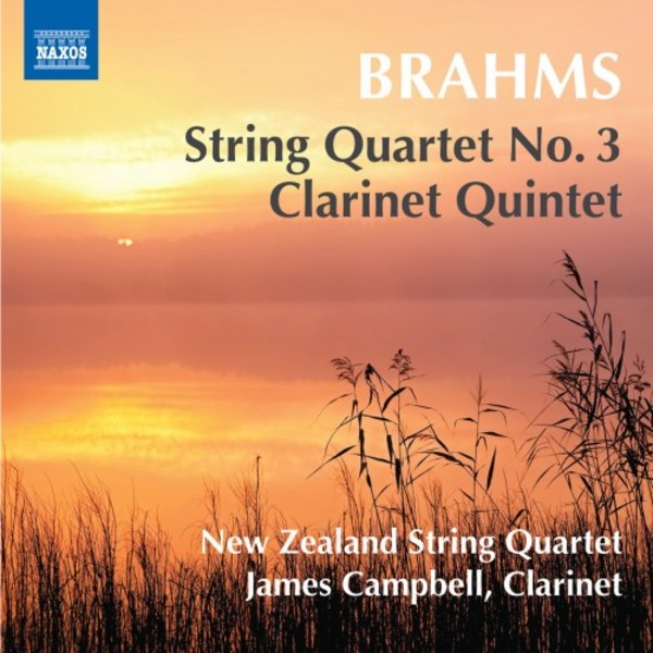 Brahms - String Quartet no.3, Clarinet Quintet