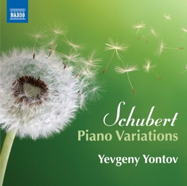 Schubert - Piano Variations