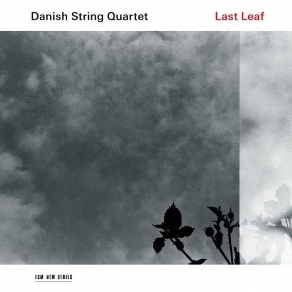 Danish String Quartet: Last Leaf (LP)