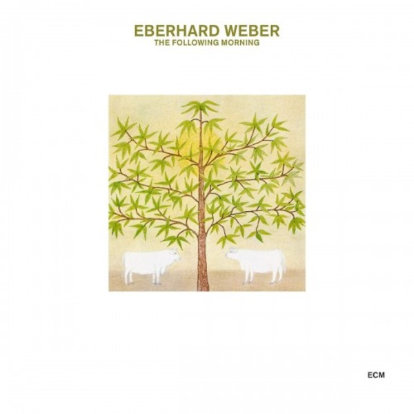 Eberhard Weber - The Following Morning