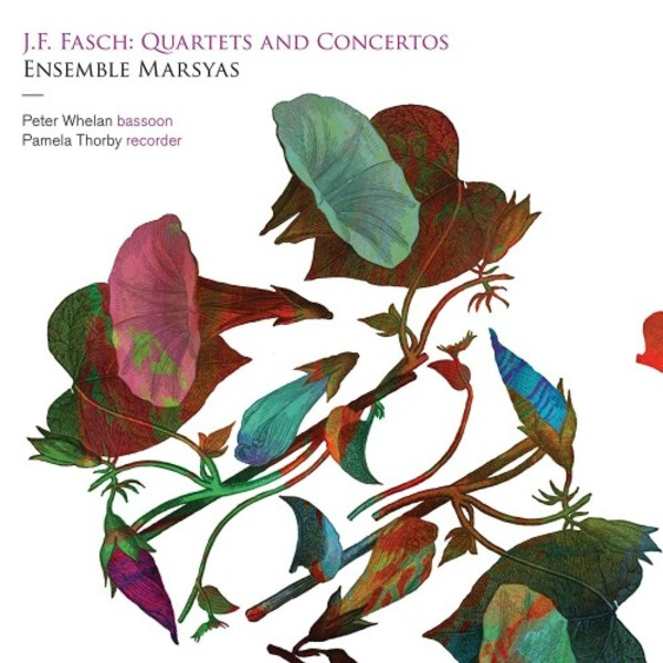 JF Fasch - Quartets and Concertos