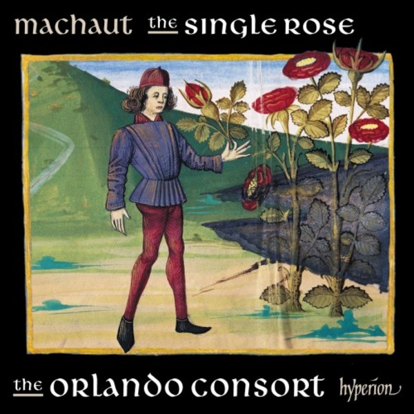 Machaut - The Single Rose | Hyperion CDA68277